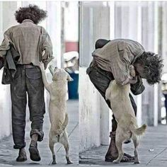 A picture says more then a thousand words. Note: click the image to see the 10 Ingenious Ways To Entertain Your Dog While Stuck In Isolation Animals And Pets, Cute Animals, Amor Animal, Love Pet, Faith In Humanity, Mans Best Friend, Dog Life, Animals Beautiful, Dogs And Puppies