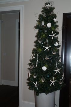 First coastal or Beach inspired Christmas Tree. Easy DIY decorations starfish and sand dollar sprayed with glitter paint add a ribbon. Clear bulbs  at Micheals filled with sand and shells from the dollar store.