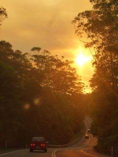 Road to Noosa #sunshinecoast #sunset #triplejroadtrip
