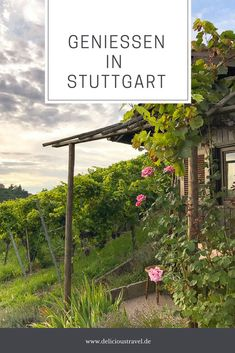 Stuttgart Restaurants, Inspiring Quotes Tumblr, Places To Travel, Places To Visit, Stuttgart Germany, Cover Photo Quotes, Recreational Activities, Happy Weekend, Germany Travel