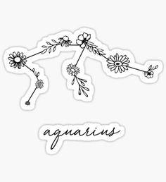 Pegatina Aquarius Zodiac Wildflower Constellation
