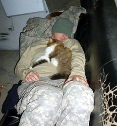 """PFC Bartholomew (the cat) is resting with his human """"....He is now officially a military working animal and is registered as a PFC (Private First Class).""""  He serves to catch and destroy Rodent Terrorist Cells in the Middle East."""