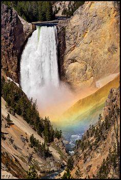 Yellowstone National Park, Teton County, Wyoming - Artists Falls in Yellowstone NP - Buscar con Google
