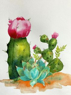 Shop for cactus art prints from Hilda Vandergriff. Each cactus art print is produced using archival inks, ships within 48 hours, and comes with a money back guarantee! Customize your cactus print with hundreds of different frames and mats, if desired. Watercolor Succulents, Watercolor Cactus, Easy Watercolor, Watercolor Print, Watercolor Paintings, Watercolors, Cactus Drawing, Cactus Painting, Cactus Art