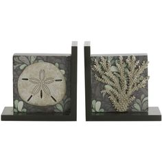 Elements Sealife Starfish/ Coral 2-piece Bookend Set ($28) ❤ liked on Polyvore featuring home, home decor, black, coral home accessories, sea home decor, ocean home decor, elements home decor and coral home decor