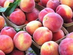 South Durham Farmers Market. Saturdays 8am-12.  Greenwood Commons Shopping Center. 5410 NC Hwy 55