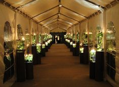 Heffernan Morgan lined U.S. Event Structure's 110-foot-long tented hallway<em>—</em>leading guests from the East Wing to the dining tent<em>—</em>with pedestals and...