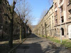 "Ústí nad Labem (Aussig), ""Ghost City"" - Abandoned Street ""Na nivách"" 50° 39' 39.71"" N 14° 0' 40.30"" E"