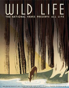 "This is a WPA Federal Art Project poster for the National Park Service showing a deer drinking from a forest stream. ""Wild Life. The National Parks Preserve All Life."" Illustrated by Frank S. Nicholson, c. 1940."