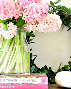 These beautiful hyacinths made for the perfect pop of pink at my front door I should definitely buy flowers more often