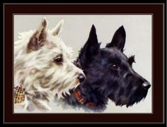 Print-Scottish-West-Highland-Terrier-Dog-Dogs-Puppy-Puppies-Vintage-Poster-Art