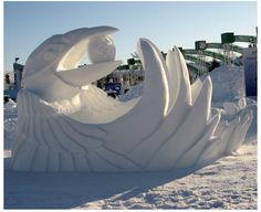 OMG!! this is Awesome!!!  SNOW Raven, 2008 in Canada