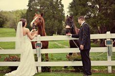 Historic Cedarwood horse-lovers wedding on Style Me Pretty | Cedarwood Weddings
