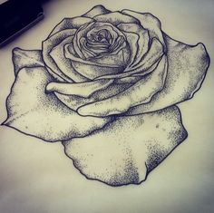 Dotwork rose design by Hannah Pixie Snowdon.Cassi remember your flamingo! Hannah Snowdon Tattoo, Hannah Pixie Snowdon, Rose Tattoos, Black Tattoos, Shoulder Cap Tattoo, Learn To Tattoo, Herz Tattoo, Tatoo Designs, Tattoo Flash Art
