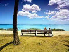 Taking in the View by /\ltus, via Flickr