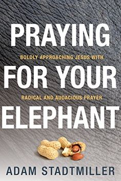 Praying for Your Elephant: Boldly Approaching Jesus with Radical and Audacious Prayer, http://www.amazon.com/dp/B00N9LW5S2/ref=cm_sw_r_pi_awdm_ffetvb1YN257V