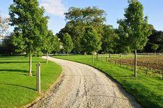 Long Driveway Landscaping | Driveway - Calimesa, CA - Photo Gallery - Landscaping Network