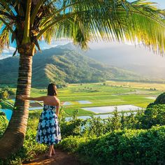 Best Things To Do in Kauai « Gary Pepper
