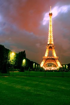 I didn't get to climb the Eiffel Tower--it was under renovations--but it was this beautiful.