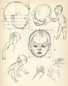 Proportions of Children, Infant, and Baby Heads Reference Sheets Poganys Drawing Lessons Zeichnung B Cartoon Drawings, Pencil Drawings, Art Drawings, Baby Cartoon Drawing, Pencil Art, Figure Drawing, Painting & Drawing, Drawing Drawing, Drawing Faces