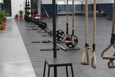 Ropes & Weights discs