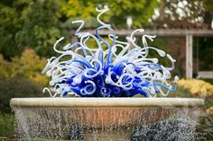 Blue Chihuly glass fountain at the Atlanta Botanical Garden. Wedding Shoot, Wedding Ceremony, Reception, Atlanta Botanical Garden, Botanical Gardens, Garden Planner, Garden Weddings, Atlanta Wedding, Fountain
