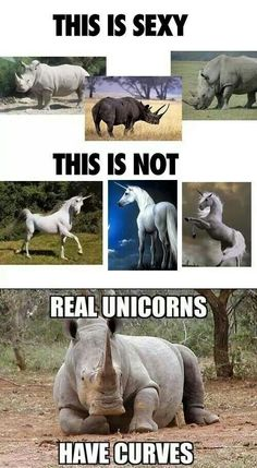 Real unicorns have curves!