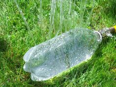 Create your own makeshift sprinkler with a two-liter bottle. | 25 Clever Tricks To Make Your Summer So Much Better