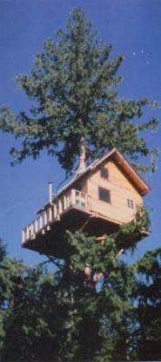 Treehouse at http://www.cedarcreektreehouse.com/ near Mt Ranier, Washington State