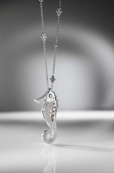 Seahorse from Paul Sheeran Jewellers  Www.davidcantwellphotography.com Jewelry Photography, Diamond Jewelry, Jewelery, Silver, Diamonds, Fashion, Diamond Jewellery, Jewlery, Moda