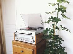 Mine had a double cassette deck and double 8 track too. Styling!