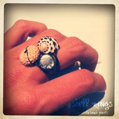 shell rings by Bella Beach Jewels!