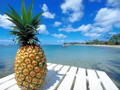 Pineapple Wallpapers 1 Pineapple Shake, Pineapple Express, Pineapple Tart, Fractals In Nature, Pineapple Wallpaper, Tropical Fruits, Fish Tacos, Tropical Paradise, Summer Paradise