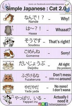 Basic Japanese Words, Japanese Phrases, Study Japanese, Japanese Culture, Learning Japanese, Japanese Cat, Japanese Things, Japanese Kanji, Learning Italian