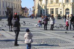 S-a deschis sezonul de hranit porumbeii in Piata Mare din Sibiu #travelsibiu #discoversibiu #discover #Sibiu #piatamare #ghidsibiu