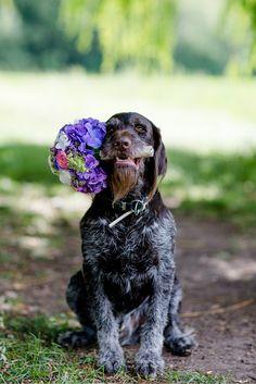 farbe-des-jahres-2018-pantone-ultra-violet-lilafarbe-des-jahres-2018-pantone-ultra-violet-lila-brautpaare-hochzeit-pretty-weddings