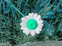 Mint green..:)