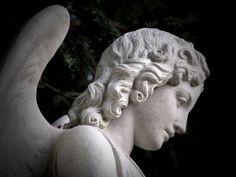 Besuch auf dem Friedhof Engesohde in Hannover
