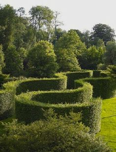 """Leonardo da Vinci had said it best, """"Simplicity is the ultimate sophistication."""" Finally a topiary maze where you can't get lost into. from Landscape Architect Piet Blanckaert."""