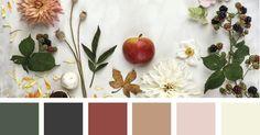Liked on Pinterest: { gathering autumn } image via: @c_colli