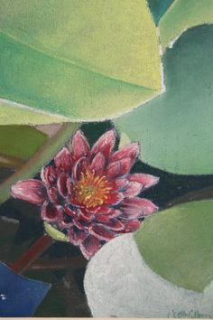 A chalk pastel of a lily facing the abundant sunshine. Part of the Garden Life Collection by Judith Cullivan.