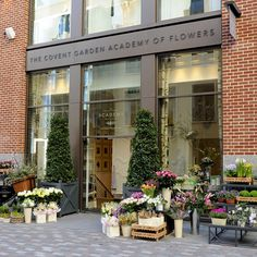 Visiting The Store | The Covent Garden Academy of Flowers