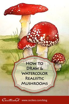 How To Draw And Watercolor Realistic Mushrooms. Free Step-By-Step Video Tutorial. Gain proficiency with The Process Of How To Sketch The Mushrooms, Painting With Watercolor And Finally Adding Details Watercolor Beginner, Easy Watercolor, Watercolour Tutorials, Watercolor Paintings, Watercolors, Watercolor Sketch, Mushroom Paint, Mushroom Drawing, Drawing Lessons