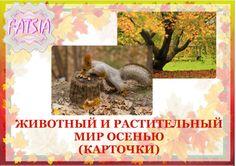 Животный и растительный мир осенью. Карточки. - Babyblog.ru