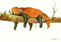 PRINT-Lesser panda red panda red cat bear by SanMartinArtsCrafts