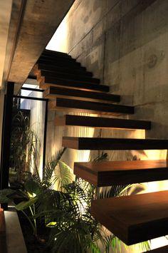 Estúdio Lorena Couto se inspira em: jardim embaixo da escada
