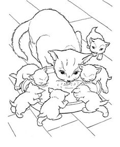 coloring bookthe three little kittens bonnie jones picasa web albums - Colouring Images Of Animals