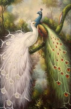 Oil painting white color peacock peafowl in forest
