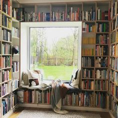 Home Libraries, Bookcase, Shelves, Windows, Anne, Home Decor, Homes, Reading, Shelving