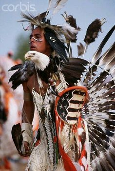 Wow look at his regalia! Just gorgeous! Native American Face Paint, Native American Warrior, Native American Pictures, Native American Artwork, Native American Wisdom, Native American Regalia, Native American Beauty, American Spirit, American Indian Art